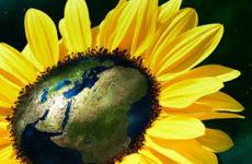 12 цитат из книги М.Фрая «Чуб земли»