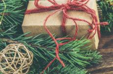 7 цитат из книги Ф.Флэгг «Рождество и красный кардинал»